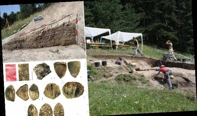 Bronze Age Austrian miners had dinner DELIVERED to their workplace