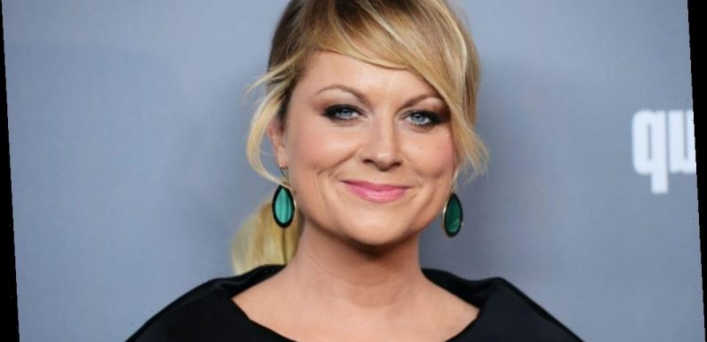 'Moxie' and Other Movies, TV Shows on Netflix Starring Amy Poehler