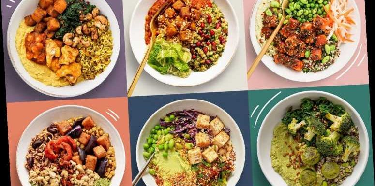 Allplants launches new Lunch range – here's how to get £10 off