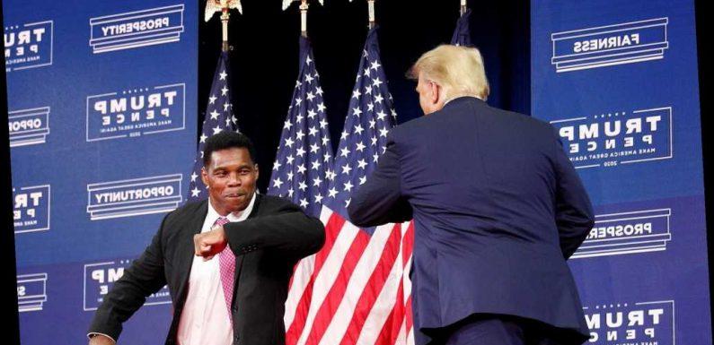 Donald Trump urges Herschel Walker to enter Georgia Senate race