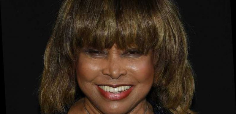 Here's How Much Tina Turner Is Really Worth