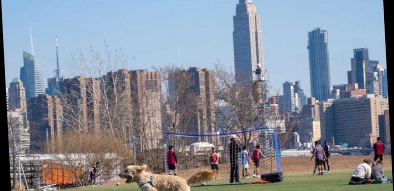 New Yorkers flock to city parks as temps hit 64 degrees