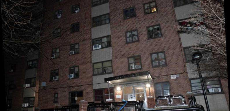 Bronx man dies weeks after being stabbed by girlfriend, cops say