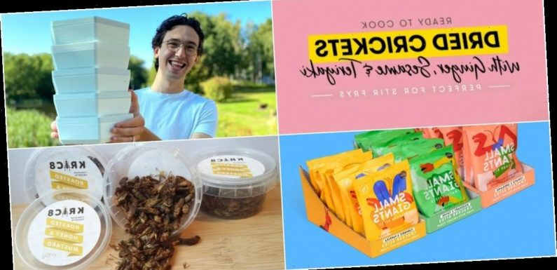Here are 10 companies hoping to cash in on the boom in edible worms and crickets
