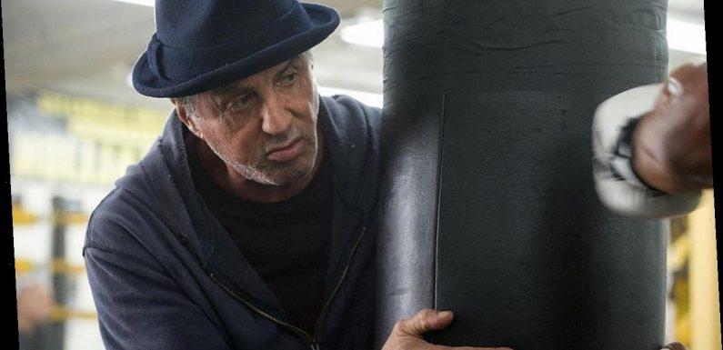 Sylvester Stallone Developing 'Rocky' Prequel TV Series
