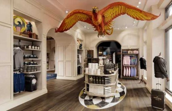 A New Harry Potter Store Is Coming to NYC — Get a Peek Inside