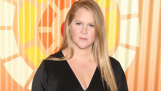 Amy Schumer Reveals Her Plans For Baby No. 2 After Putting IVF Plans On Hold Amid Pandemic