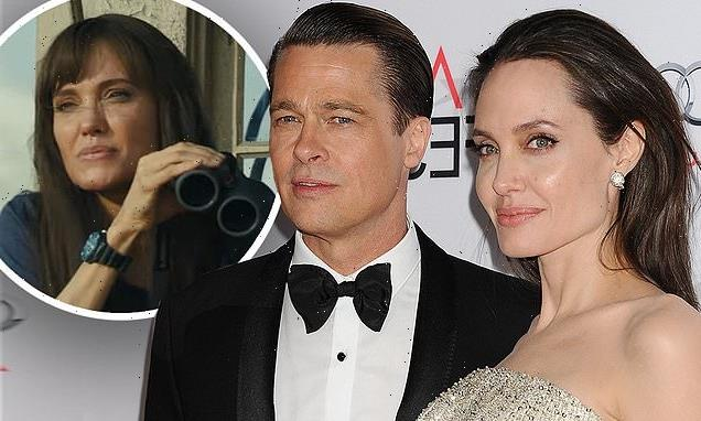Angelina Jolie hints Brad Pitt divorce  left her 'broken'