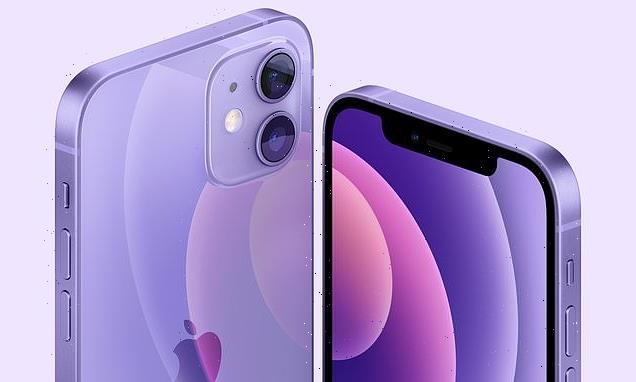 Apple reveals PURPLE iPhone 12 and new iMac in seven different shades