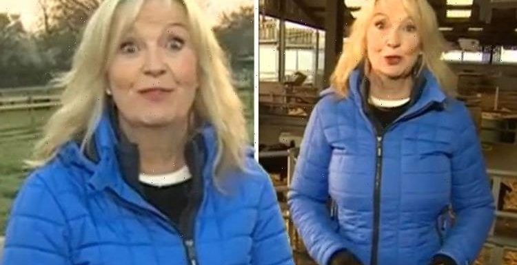 Carol Kirkwood apologises to BBC Breakfast viewers for errors after on-set issue 'So cold'
