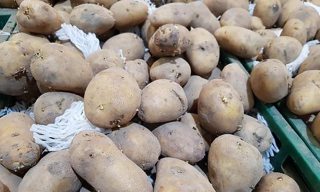 Climate change makes it harder to grow potatoes used for French fries