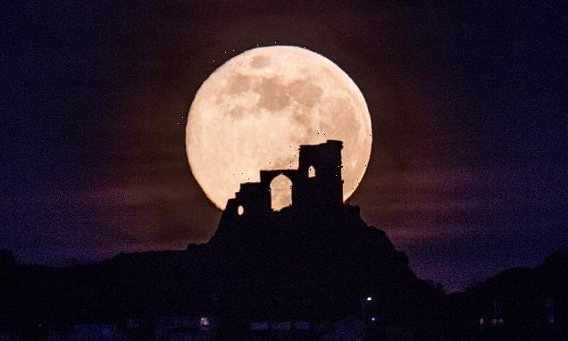 Don't miss the Pink Moon! Supermoon set to dazzle the night sky MONDAY