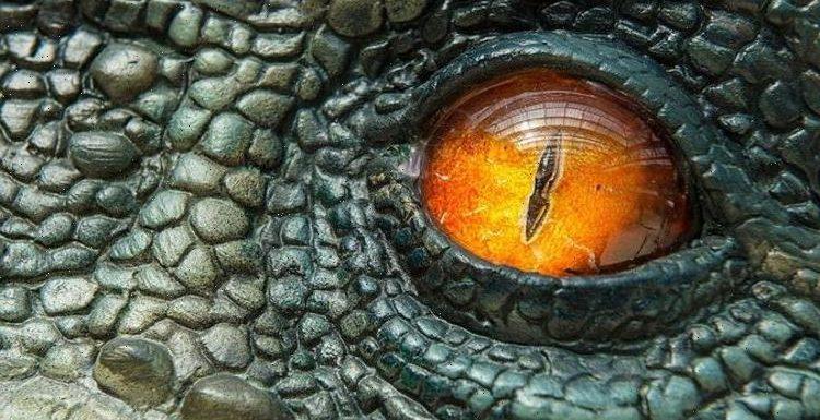 Elon Musk's business partner on idea of real Jurassic Park: 'Super exotic novel species'