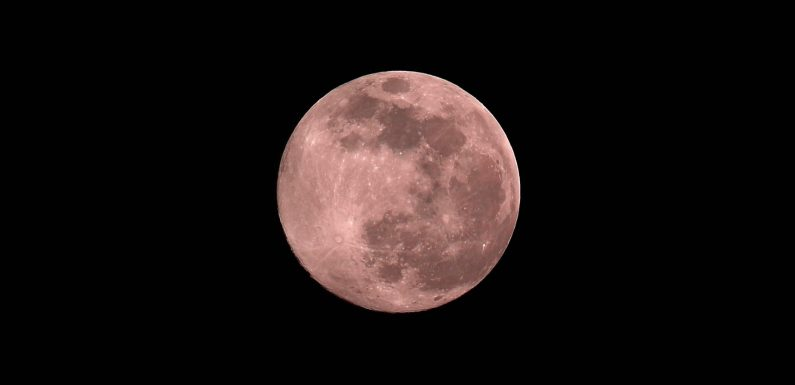First pink supermoon of 2021: everything you need to know