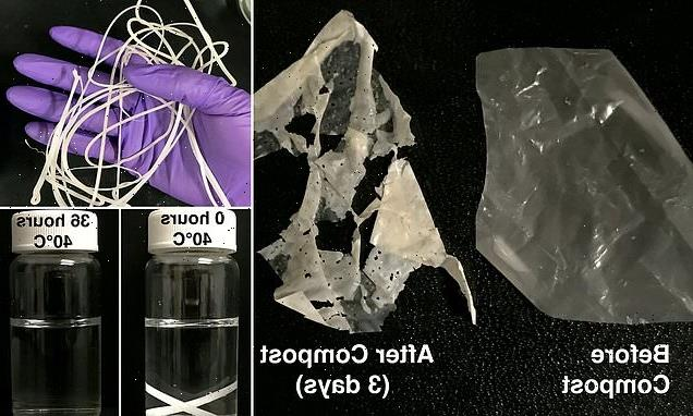 First truly biodegradable PLASTICS developed