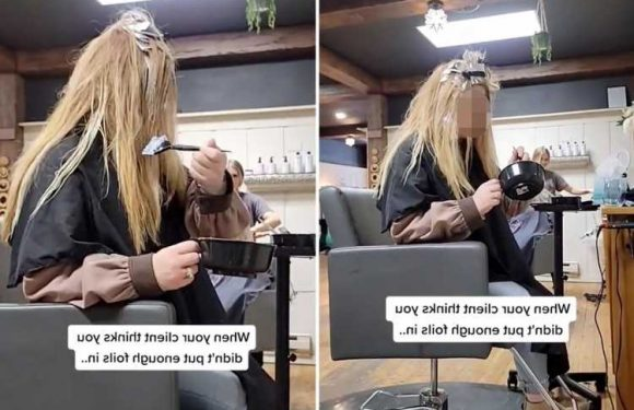 Hairdresser baffled as client cheekily gives herself extra colour mid-appointment – and people are outraged for her
