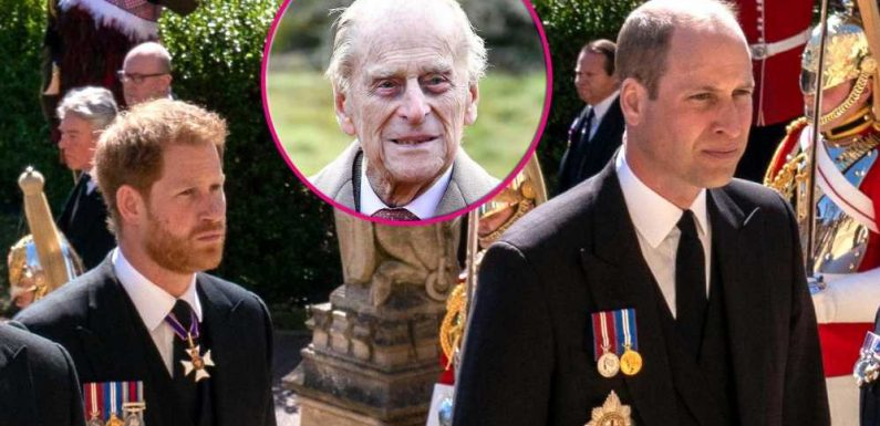 How William, Harry Subtly Showed Each Other Support at Philip's Funeral