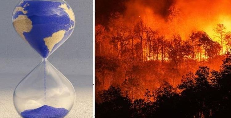 Humanity on the brink: Scientists warn decreasing biodiversity will lead to 'catastrophe'