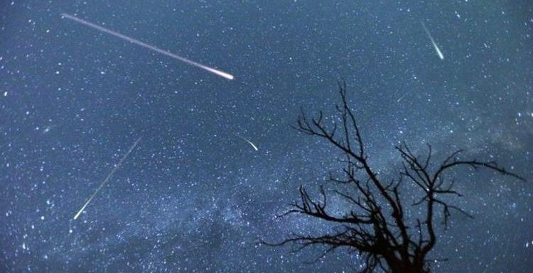 Lyrids meteor shower 2021: Where to see the shooting stars this week