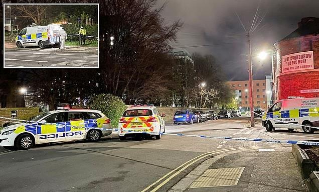 Man, 30, shot dead and another, 31, wounded in Sheffield