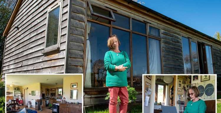 Mum, 66, faces being kicked out on the streets after council orders her to tear down £59k cabin home of seven years