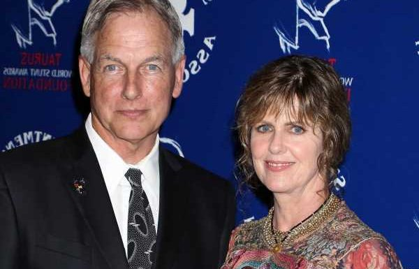 'NCIS': Is Mark Harmon the Reason Pam Dawber Doesn't Act Full-Time?