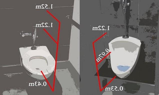 Scientists reveal how aerosols from a toilet flush linger for 20s