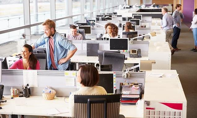 Sitting at a desk by a WINDOW makes you more productive than by a wall
