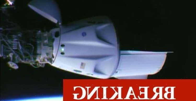 SpaceX Dragon docks with International Space Station in ground-breaking Elon Musk success