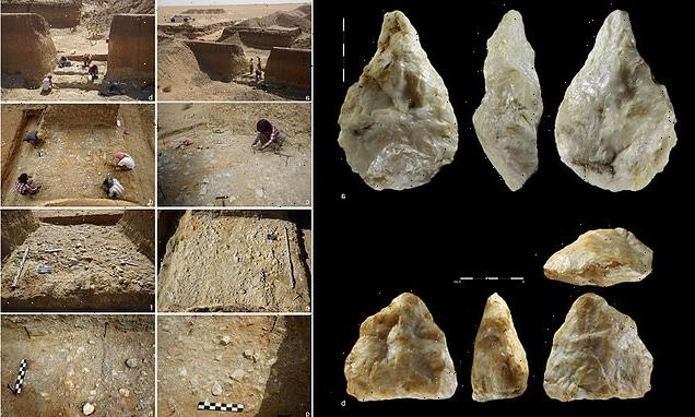 Stone tools used by homo erectus found in abandonedSahara goldmine