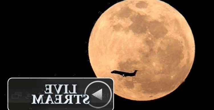 Supermoon LIVE stream: Watch the 'stunning experience' of Pink Moon live online tonight