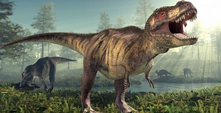 When dinosaurs ruled the Earth: Billions of T.rexes once prowled North America – study