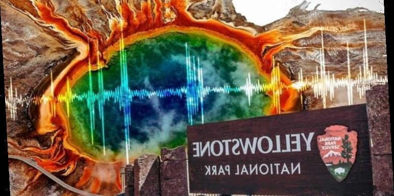Yellowstone volcano: 105 earthquakes rock supervolcano amid fears it's overdue an eruption