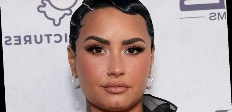 The Real Meaning Behind Demi Lovato's 'Lonely People'