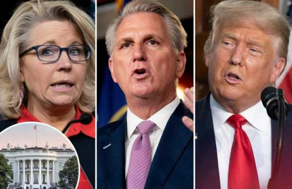 100 Republicans 'threaten to form NEW party if GOP doesn't reject Trump' as vote to oust Liz Cheney looms