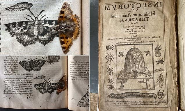 400-YEAR-old butterfly found in an ancient Cambridge University book