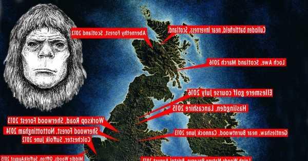 British Bigfoot hunter shares fifteen terrifying encounters from across the UK