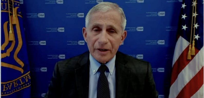 Fauci says the COVID-19 vaccines available in the US are likely to work against the variant first found in India