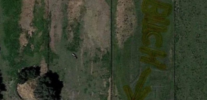 Google Maps user spots rude 'b***h' message etched into grass pointing to house