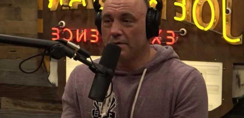 Joe Rogan slams 'woke' culture for 'silencing straight white men' as shock jock says it's 'going too far'
