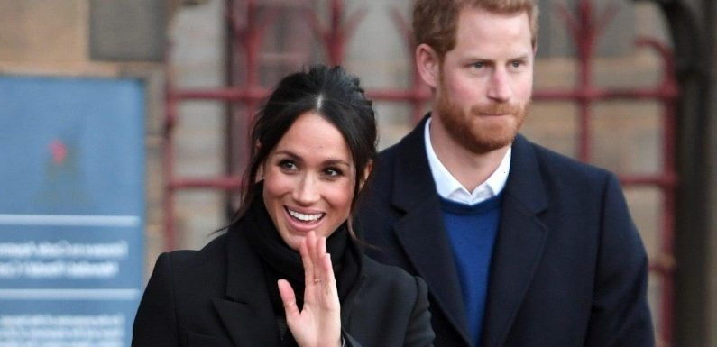 Meghan Markle & Prince Harry Release New Pic of Archie for Birthday