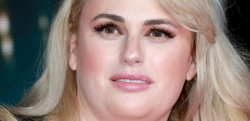Rebel Wilson Opens Up About Her Fertility Struggles