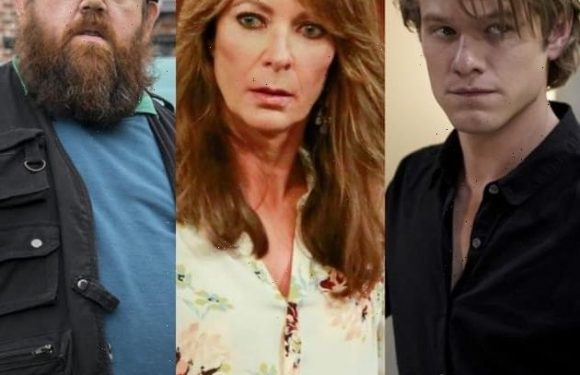 TV Cancelations: Did Your Favorite Show Get the Axe?