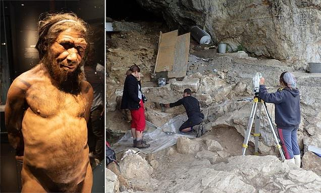 Traces of Neanderthal DNA extracted from cave dust in Spanish cave
