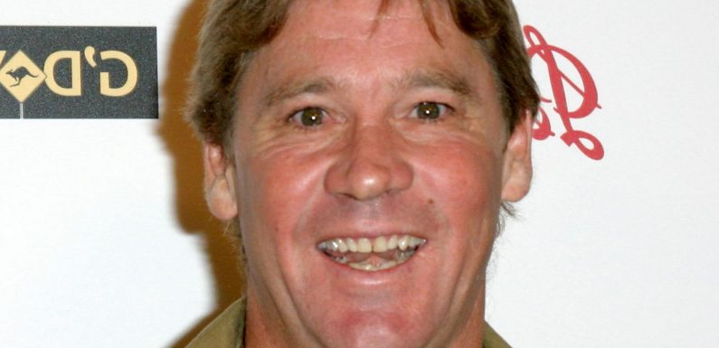 What You Never Knew About Steve Irwin