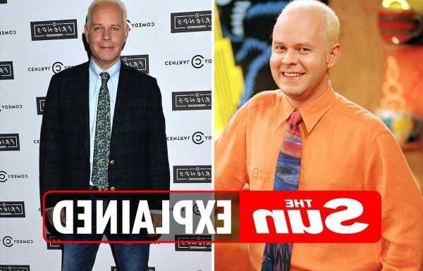 Who played Gunther on Friends and where is he now?