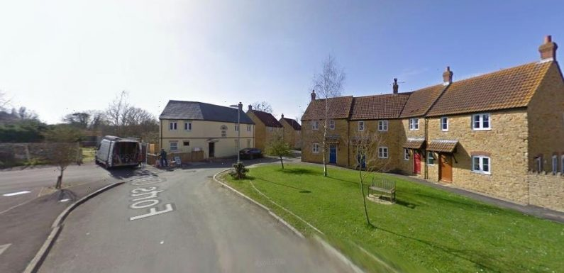 Woman, 31, charged with murdering man, 45, who died after being stabbed in Somerset village