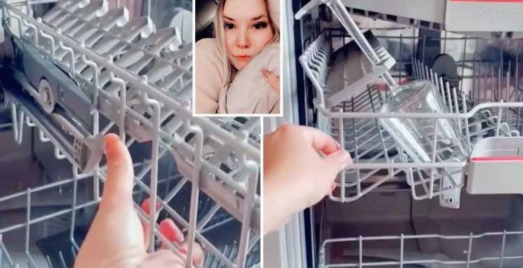 Woman shares easy dishwasher hack which instantly makes it easier to fit more in