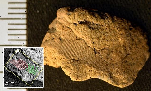 5,000-year-old fingerprints on Neolithic pottery left by two males