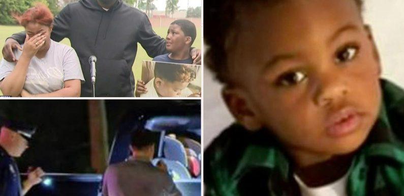 Detroit freeway shooting: Arrests after Brison Christian, 2, killed and brother, 9, hurt when 'gunman opens fire on car'